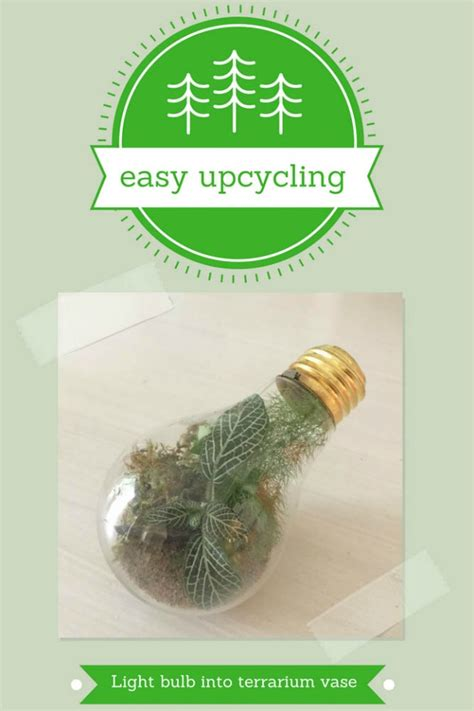 easy upcycling easy upcycling turn a light bulb into a terrarium vase