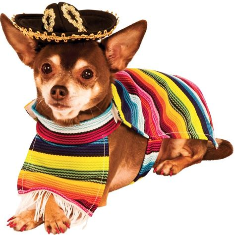 mexican dogs rubie s costume company mexican cat serape medium chewy