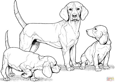 coloring pages of beagle puppies rottweiler puppy coloring pages