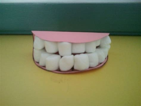 teeth crafts for 33 best dental health theme images on
