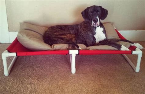 great dane dog bed 17 best ideas about great dane bed on pinterest dog beds