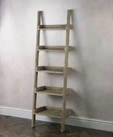 Ladder Bathroom Shelf » New Home Design