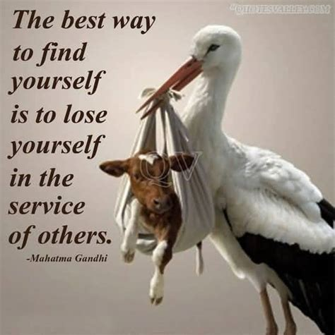 Best Finder Service The Best Way To Find Yourself Is To Lose Yourself In The Service Of Others