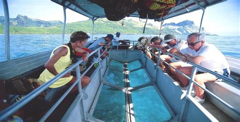 glass bottom boat havelock trips to andaman best packages with kesari tours