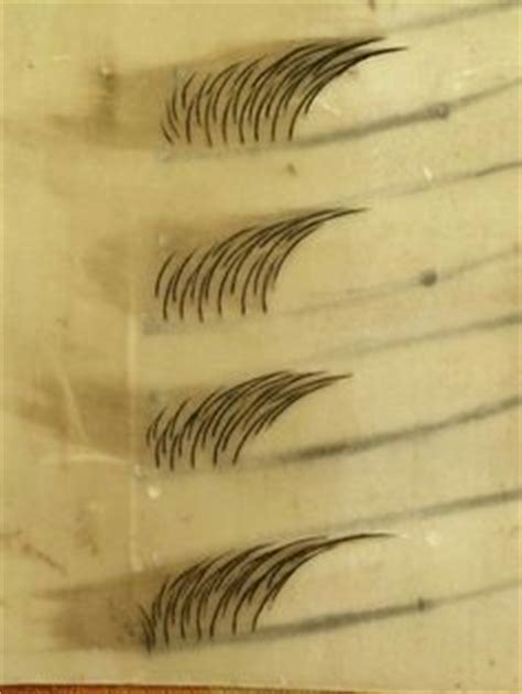 eyebrow tattoo pensacola 1000 images about eyebrow tattoo on pinterest eyebrow