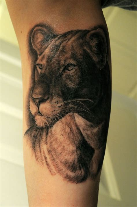 lioness tattoo design my new lioness the artist was kendall vader at