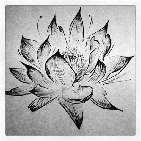 black and white lotus flower sketch tattoo ideas