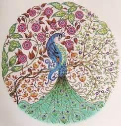secret garden coloring book nz 秘密花园 填色减压效果因人而异 新浪新闻