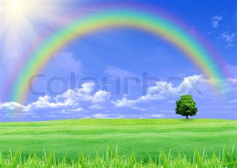 Rainbow Green rainbow a green glade and blue sky stock photo