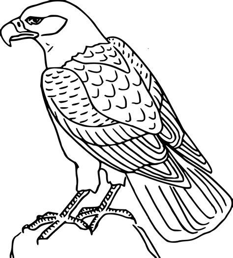 Coloriage Aigle Royal 224 Imprimer Sur Coloriages Info