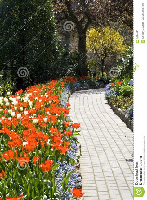 footpath flowers footpath and flowers stock photos image 5224823