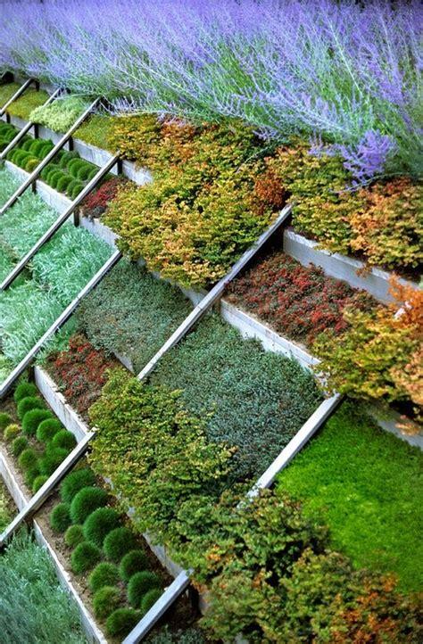 hillside garden my garden is my haven pinterest