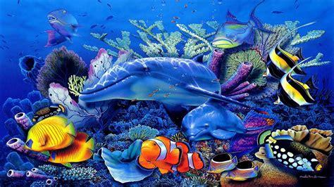 www fish live wallpaper live fish wallpaper for desktop 33 wallpapers