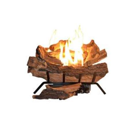 Gas Fireplace Embers Home Depot by Emberglow American Elm 18 In Vent Free Gas Fireplace Logs Aevf18fang The Home Depot