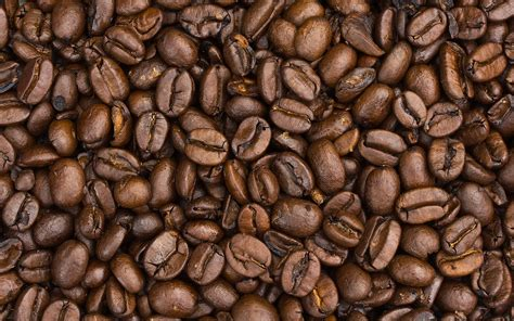 coffee seed wallpaper granos de caf 233 asados fondos de pantalla granos de caf 233