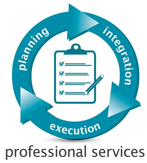 professional service professional services itc systems