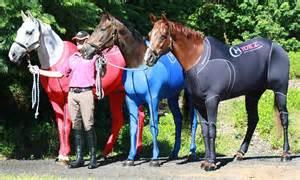 olympics clothes horses bizarre bright coloured suits