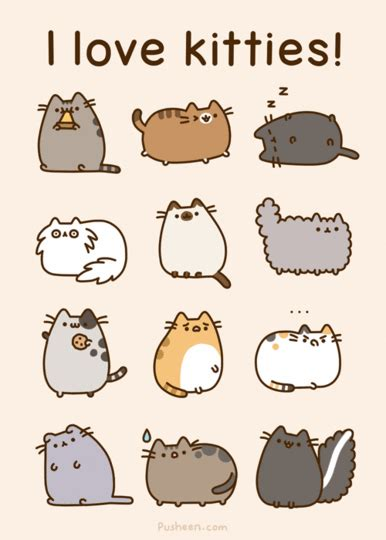 Pusheen Cat Meme - i love kitties pusheen pictures photos and images for