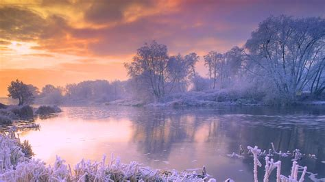 wallpaper hd 1920x1080 winter winter full hd wallpaper and background image 1920x1080