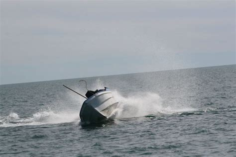 whale attacks boat whale attacks a boat in mexico animals