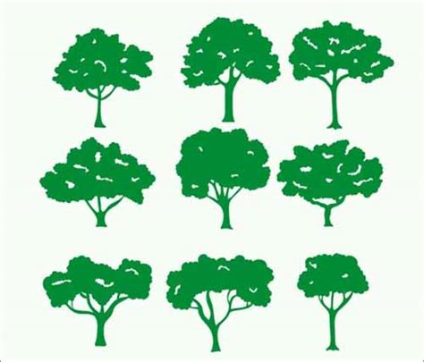 vector tree free tree vector 500 free editable illustrations to