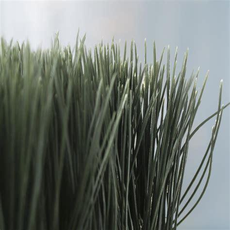 artificial wheat grass planter on sale home decor