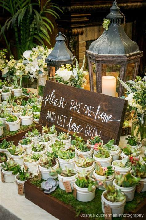 wedding souvenirs layout best 25 succulent wedding favors ideas on pinterest