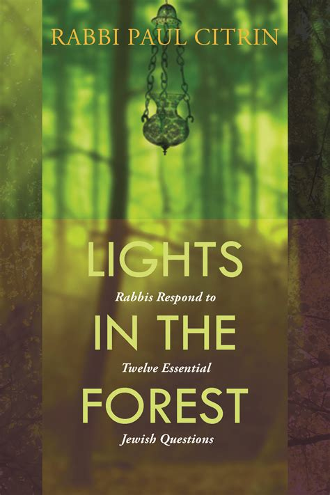 the organizational compass hebrew edition books lights in the forest 12 essential questions