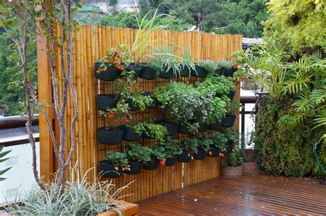 Plastik Buat Okulasi 30 inspirasi gambar kebun di rumah dari bahan murah meriah