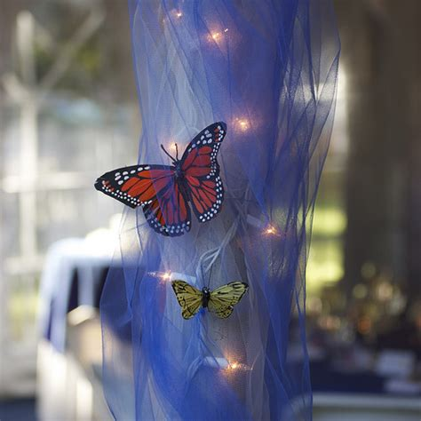 new themes butterfly matt katherine s wedding butterfly decorations flickr