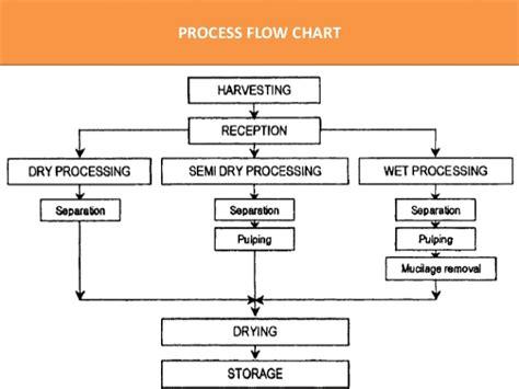 coffee flowchart coffee processing technology