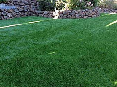 green grass landscaping green lawn haxtun colorado landscape ideas backyard landscaping