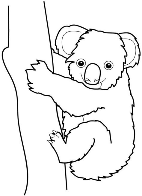 Koala Coloring Pages Dragoart Coloring Pages Koala Template