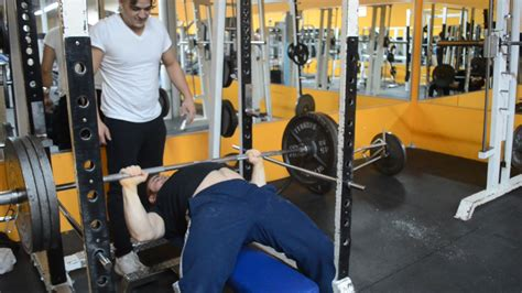 intermediate bench press 28 images 6 best intermediate