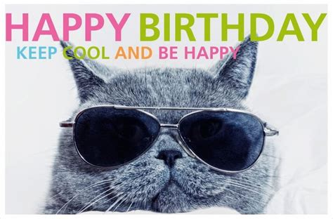 Cool Quotes For Birthday Happy Birthday Cat Keep Cool An Be Happy Iluvcats