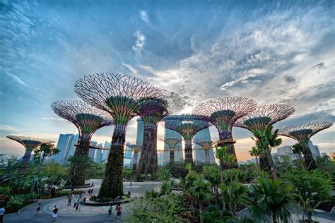 gardens by the bay park in singapore thousand