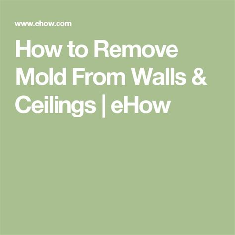 How To Clean Mould Walls And Ceilings by 1000 Ideas About Remove Mold On Remove Mold