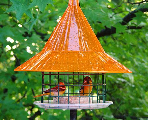 sky cafe caged oriole feeder