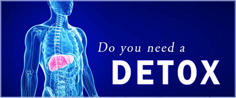 When Do You Need Detox by Do You Need To Detox Mount Albert Chiropractic