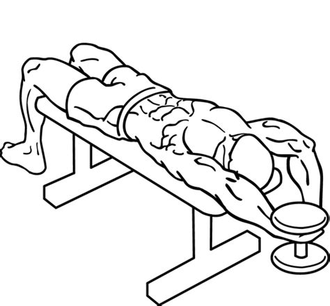 Assisted Bench Press Machine Scoliosis Workouts