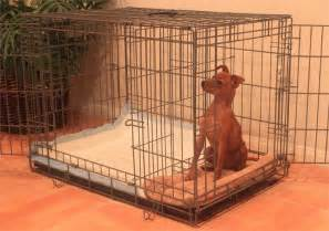 Amazon Room Divider - xlarge puppy apartment one payment