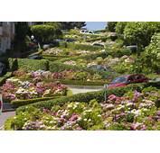 Foto Lombard Street En San Francisco  Ociogo
