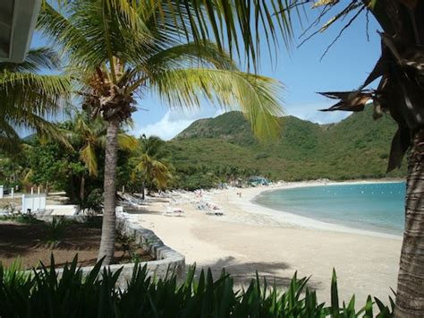 radisson hotels  developed  caribbean