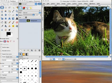 tutorial c image processing 49 best photo post processing gimp images on pinterest
