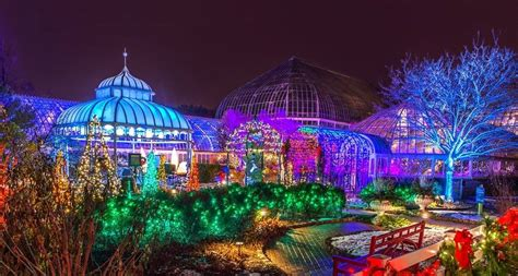 best christmas craft shows 2018 inpennsylvania phipps conservatory winter flower show and light garden 2018 in pittsburgh pa everfest