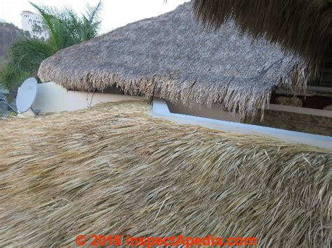Palm Thatch Roof Thatch Roof Inspections Information Sources Design