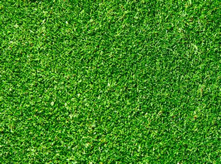 grass background pattern free seamless green grass texture by freebackgroundweb on