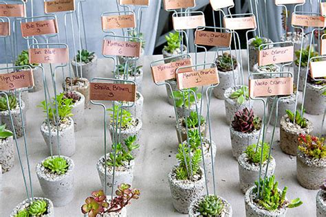 backyard wedding favors diy wedding plant favors are perfect for a green wedding