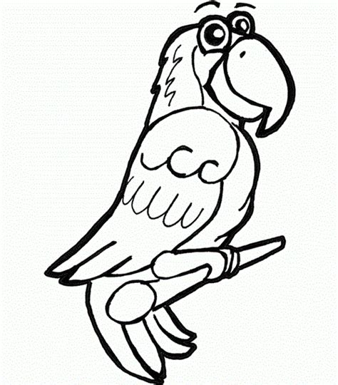 parrot coloring pages online attractive parrot coloring pages online for preschoolers