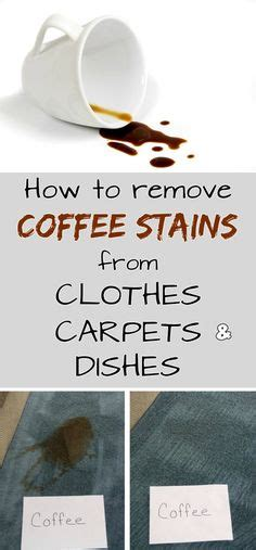 the best stain remover for clothes testing laundry stain removal stains the o jays and science